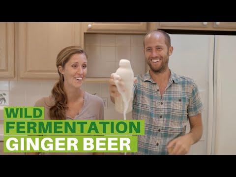 Wild Fermentation E3   How to Make Ginger Beer