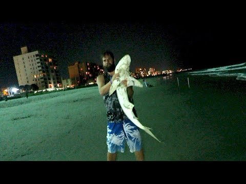 Caught a Shark | Myrtle Beach