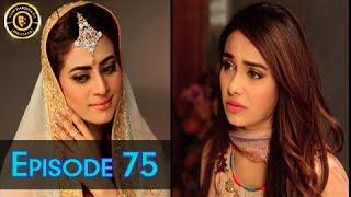 Haal-e-Dil - Episdoe 75 | Top Pakistani Dramas | ARY Zindagi