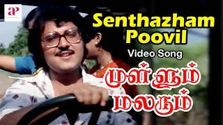 Mullum Malarum Tamil Movie Video Songs | Senthazham Poovil Video Song | Rajinikanth | Sarath Babu