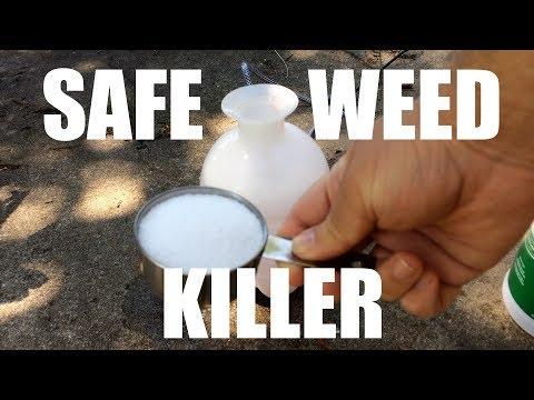 Easy Weed Killer from Simple Household Ingredients