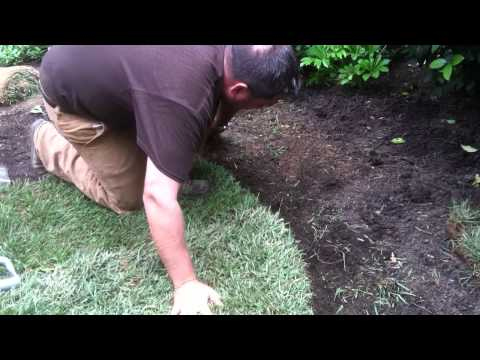 How To Properly Prepare For and Lay Sod