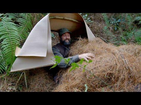 Survival 101: Building A Simple Shelter