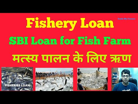 How to Get Fishery Loan from SBI | Loan for Fish Farm