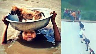 Great People Saving Animals Lives