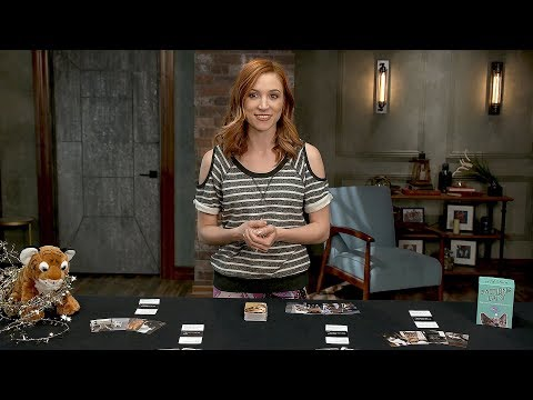 How to Play Action Cats!