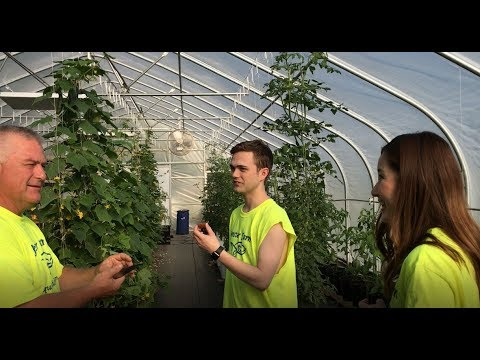 Working In The Greenhouse With My Family