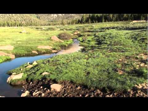 Golden Trout Wilderness (2).mpg