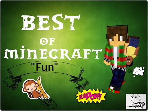 Best of Minecraft #2 - Having