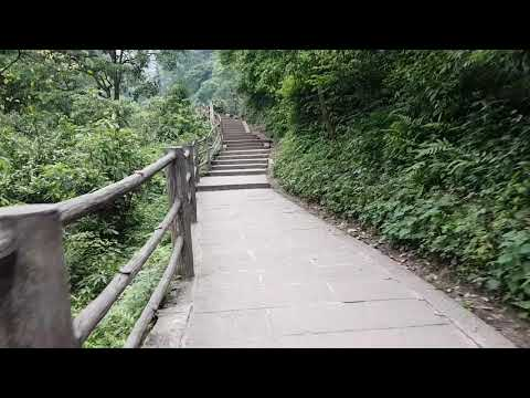 Walk to a monestary on mount Emei Shan China