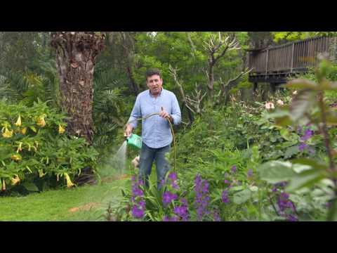 The Garden Gurus - Combat Sandy Soil Conditions