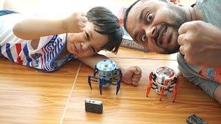 Battle Spider Hexbug Battle Spiders Arish Vs AliShanMao
