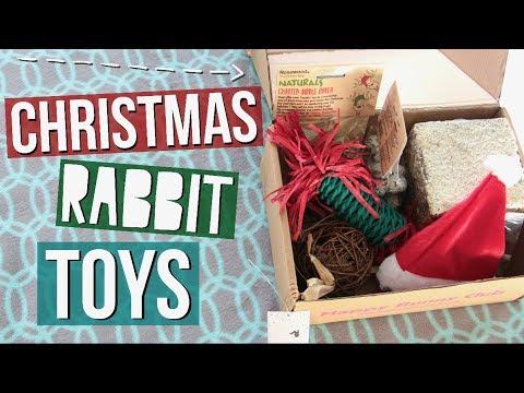 Happy Bunny Club Christmas Box Unboxing