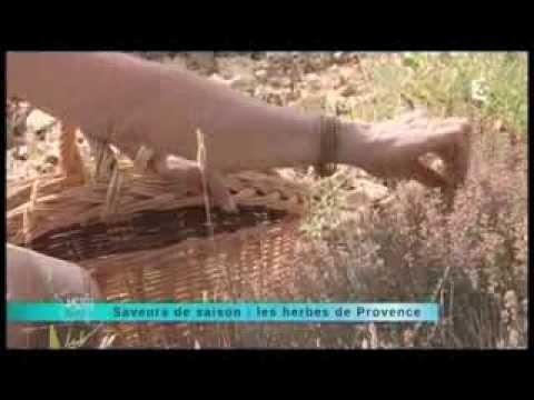 Herbes de Provence mardi 17 septembre