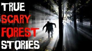 forest encounter Videos - 9tube tv