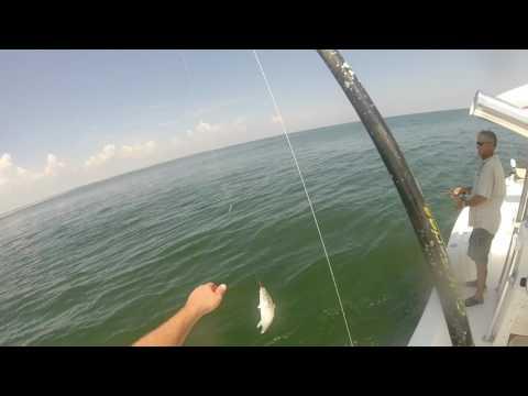 Florida Fishing: Red Hot Spanish Mackerel