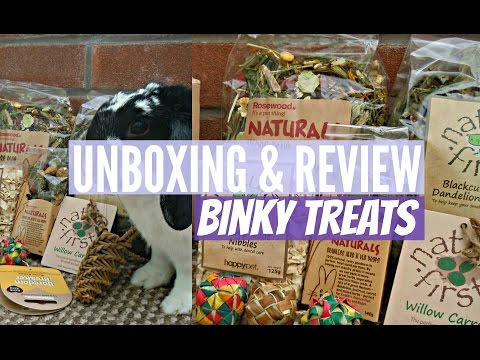 Binky Treats Package UNBOXING & REVIEW | RosieBunneh