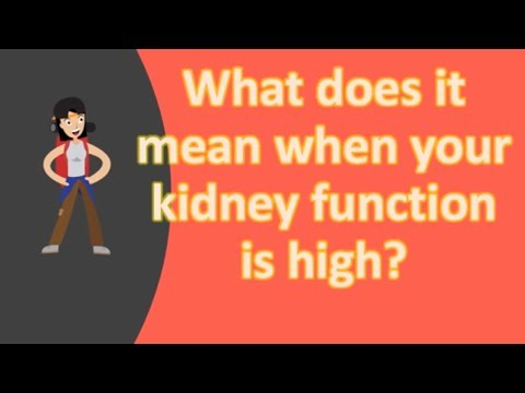 What does it mean when your kidney function is high ?