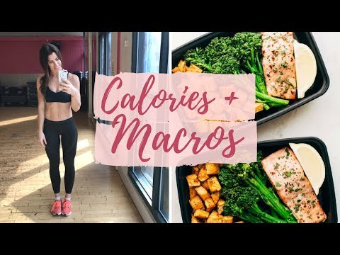 HOW TO TRACK YOUR CALORIES + MACROS | AN EASY GUIDE!
