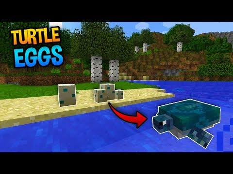 TURTLE EGG PREVIEW!! - Minecraft Update News (Aquatic Update)