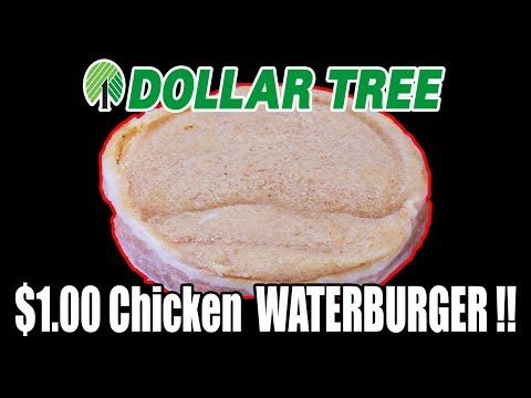 Dollar Tree $1.00 Chicken WATERBURGER! - WHAT ARE WE EATING?? - The Wolfe Pit