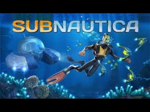 Subnautica Time Capsule