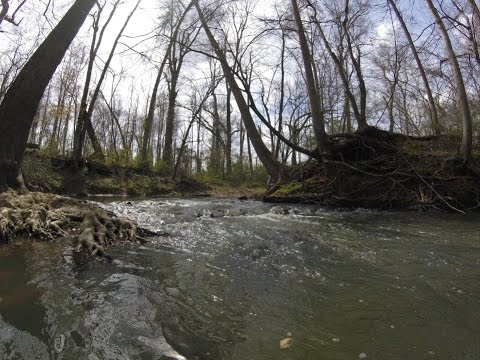 Exploring More of the Amazing Creek System!!!