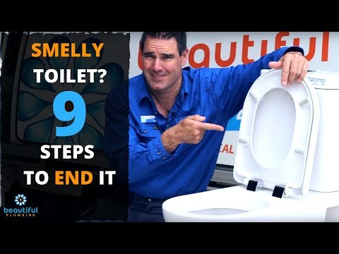 WHY Your Toilet Stinks. You Need to Know Easy Solution. PAY ZERO