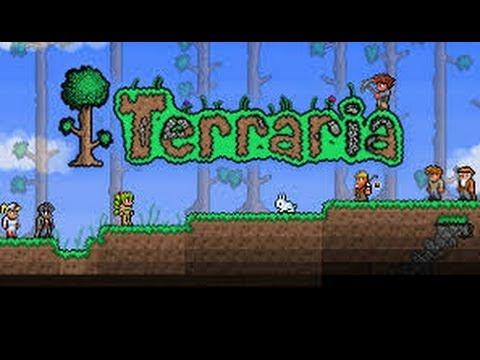 How to make a terraria server