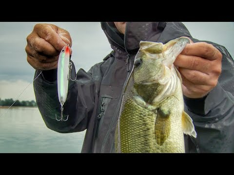 How to Fish Walking Topwater Baits