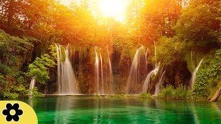 Relaxing Zen Music, Positive Energy Music, Relaxing Music, Slow Music, ✿3133C