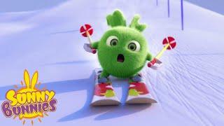 SUNNY BUNNIES - Down the Ski Slope | Season 5 | Cartoons for Children