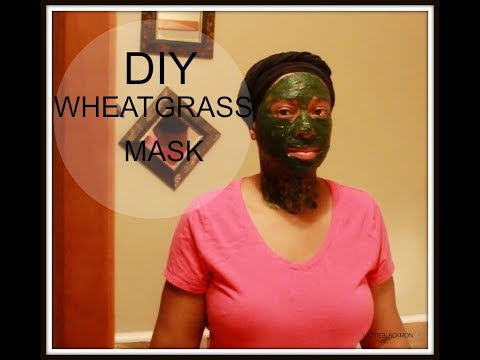 How To Make A DIY Wheatgrass MaskBenefits the Sign of Aging, Sagging Skin, Elasticity, Youthful Glow