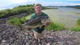 Big MN Bass Crushing Frogs!