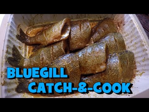 Bluegill CATCH-&-COOK! Be Careful What you Eat!!! (Homage to my Mom) (Collingswood, NJ)