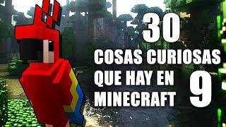 30 cosas curiosas que hay en Minecraft - Parte 9