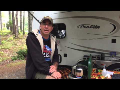 How to get rid of wasp's while camping