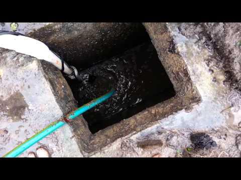 Septic tank repair replacing an effluent pump