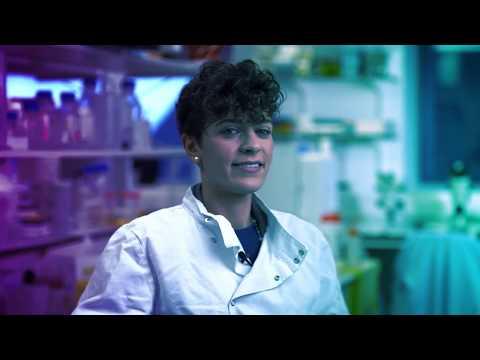 About my secondment: Elena Mancuso - facilitating the innovation cycle