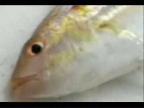 Lagen, El Nido, Palawan - Video Clip4 of 5