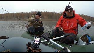 рыбалка в десногорске на хищника