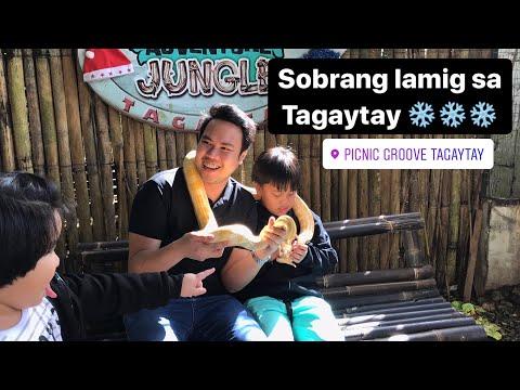 Sobrang lamig sa tagaytay (Picnic Grove)
