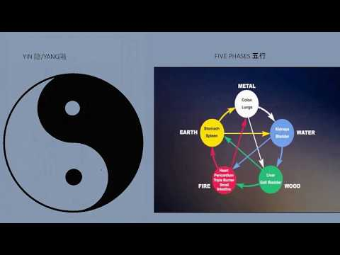 Lim Lecture: Air/Qi Connections: Notes from the History of Science and Medicine
