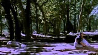 Kunguma Chimizh - Mohan, Ilavarasi, Revathi - Tamil Super Hit Movie
