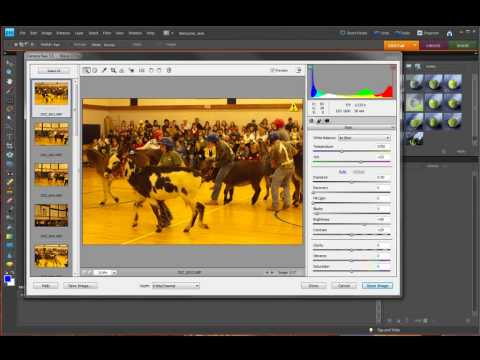 Photoshop Elements Batching Raw Images