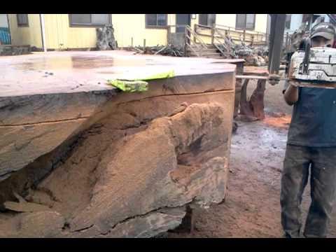 Redwood Burl Inc. - Cutting Fresh Slabs