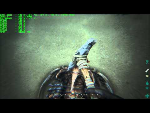 Ark Survival Evolved Max Settings GTX 980 FX 8350 Trilobite Farming Bug Report