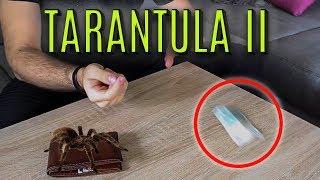 Magic Review #12 - Tarantula II / Tarantula 2 by Yigal Mesika - Best Levitation Device ?!