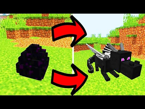 Minecraft How To Hatch The Ender Dragon Egg (WORKING 2018) (PS4/XBOX/WII/MCPE) *NEW*