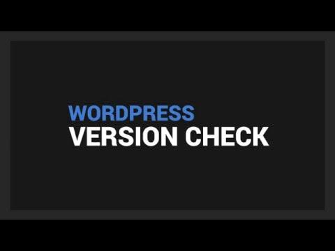 Wordpress Version Check - Chrome Extension